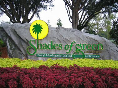 mco-to-shades-of-green